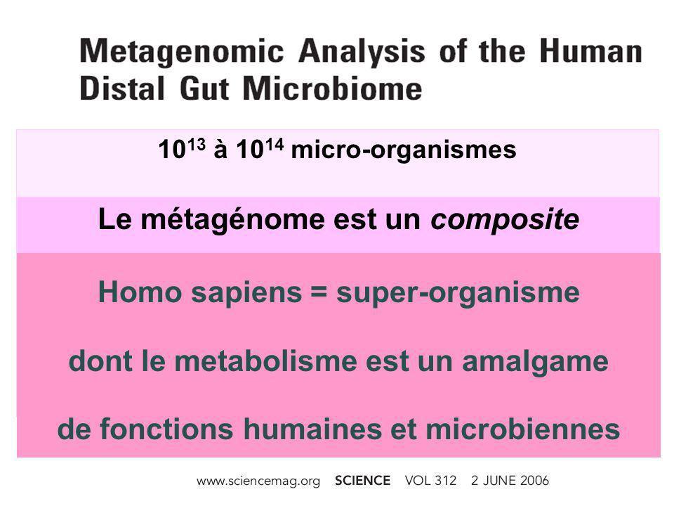 MetaHIT (Metagenomics of the Human Intestinal Tract) Catalogue des gènes microbiens fécaux (Sujets normaux, obèses, ou atteints de MICI) Qin et al, Nature 2010