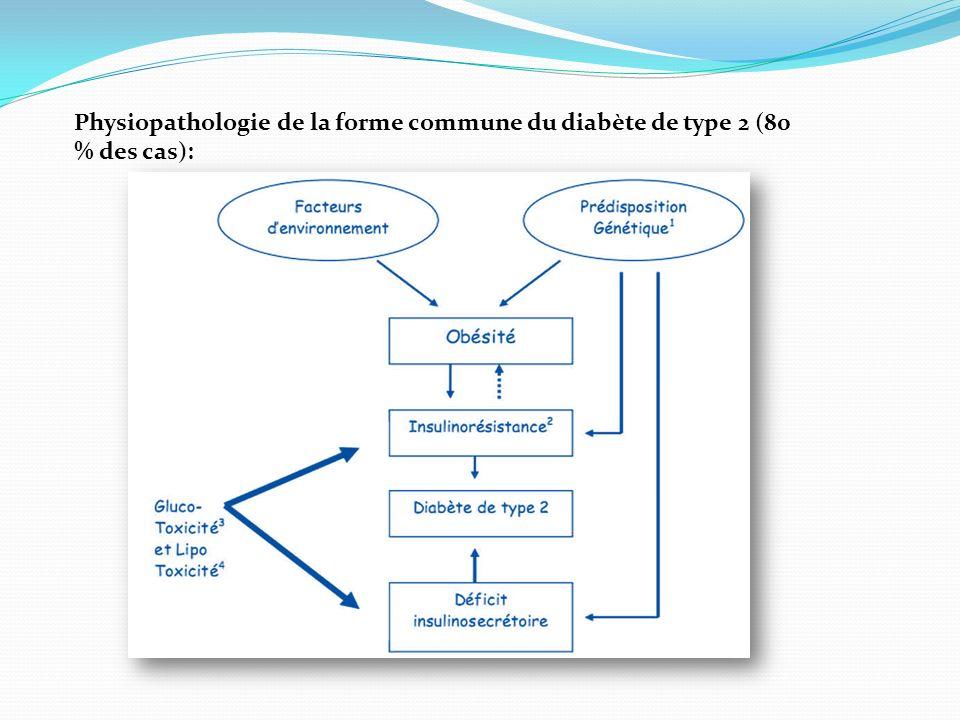 Physiopathologie de la forme commune du diabète de type 2 (80 % des cas):