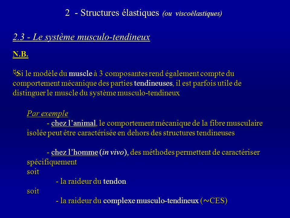2.3 - Le système musculo-tendineux N.B.
