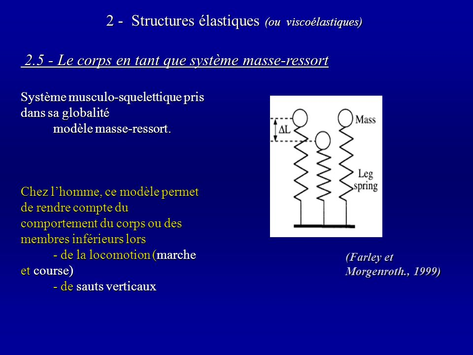 2.5 - Le corps en tant que système masse-ressort 2.5 - Le corps en tant que système masse-ressort Système musculo-squelettique pris dans sa globalité modèle masse-ressort.
