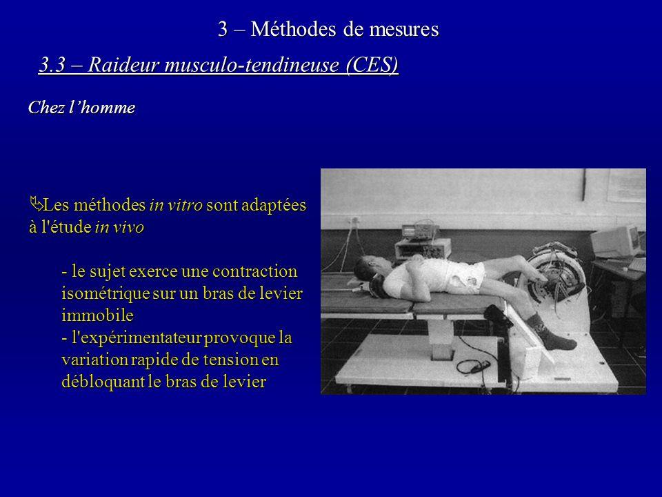 3 – Méthodes de mesures Les méthodes in vitro sont adaptées à l étude in vivo Les méthodes in vitro sont adaptées à l étude in vivo - le sujet exerce une contraction isométrique sur un bras de levier immobile - l expérimentateur provoque la variation rapide de tension en débloquant le bras de levier 3.3 – Raideur musculo-tendineuse (CES) Chez lhomme