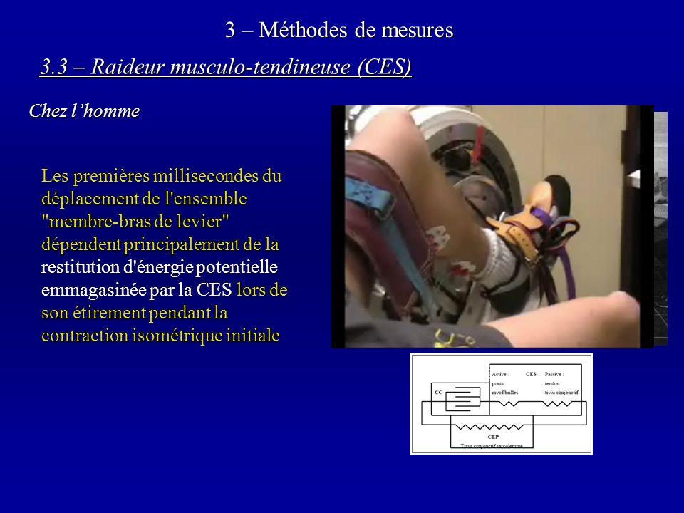 3 – Méthodes de mesures 3.3 – Raideur musculo-tendineuse (CES) Chez lhomme Les premières millisecondes du déplacement de l ensemble membre-bras de levier dépendent principalement de la restitution d énergie potentielle emmagasinée par la CES lors de son étirement pendant la contraction isométrique initiale