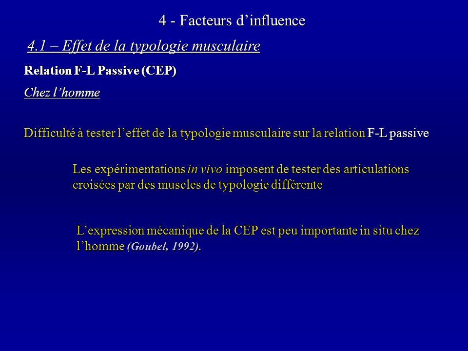 4 - Facteurs dinfluence Chez lhomme 4.1 – Effet de la typologie musculaire Relation F-L Passive (CEP) Difficulté à tester leffet de la typologie musculaire sur la relation F-L passive Les expérimentations in vivo imposent de tester des articulations croisées par des muscles de typologie différente Lexpression mécanique de la CEP est peu importante in situ chez lhomme (Goubel, 1992).