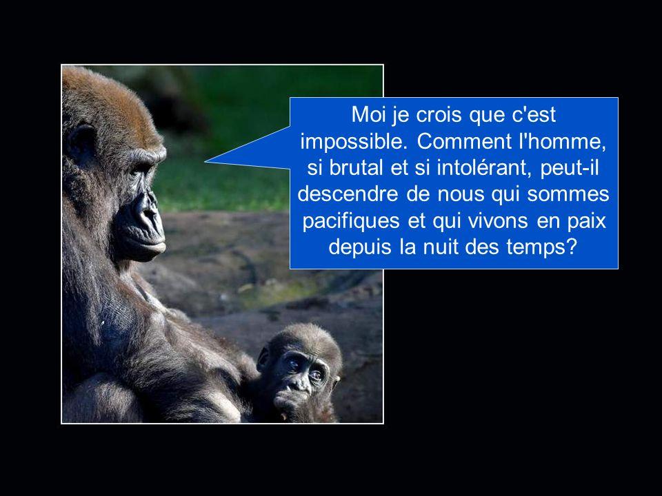 Hélas, il semble que ce soit la triste réalité! Des savants affirment que nous sommes les ancêtres de l'homme!