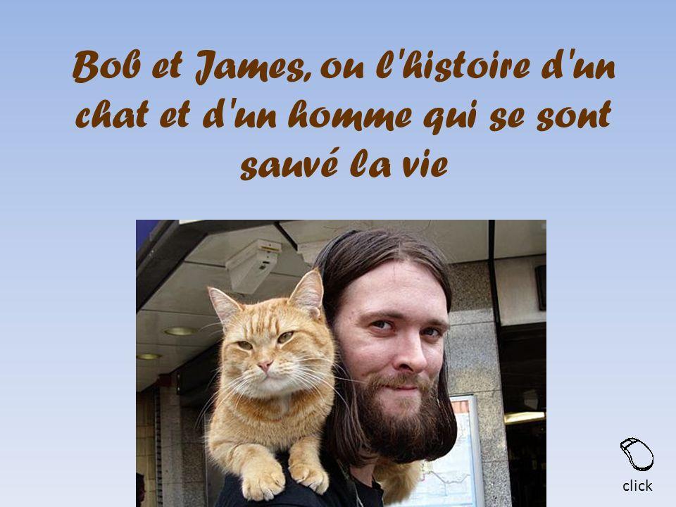 Bob et James, ou l'histoire d'un chat et d'un homme qui se sont sauvé la vie click