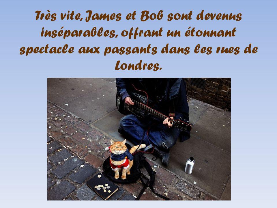 Très vite, James et Bob sont devenus inséparables, offrant un étonnant spectacle aux passants dans les rues de Londres.