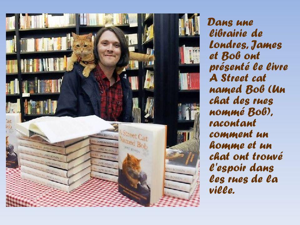 Dans une librairie de Londres, James et Bob ont présenté le livre A Street cat named Bob (Un chat des rues nommé Bob), racontant comment un homme et u