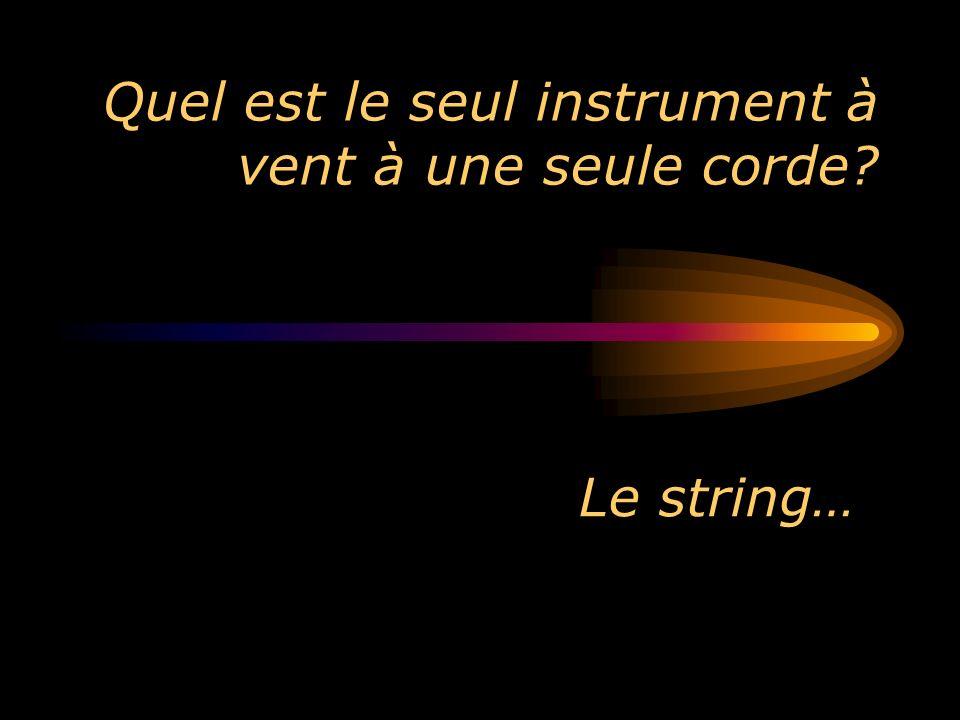 Quel est le seul instrument à vent à une seule corde? Le string…