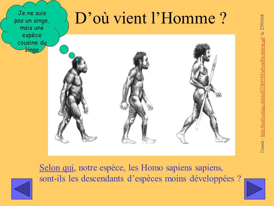 Selon qui, notre espèce, les Homo sapiens sapiens, sont-ils les descendants despèces moins développées ? Dessin : http://tecfa.unige.ch/etu/E72b/95/Du