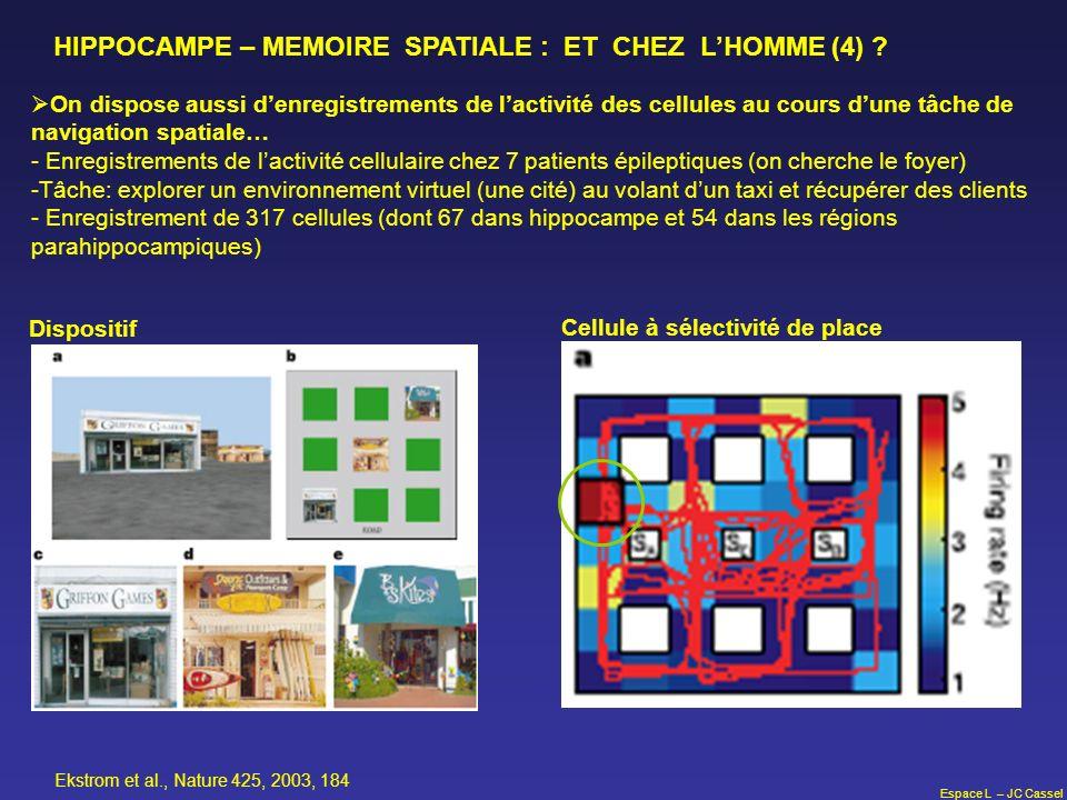 Espace L – JC Cassel HIPPOCAMPE – MEMOIRE SPATIALE : ET CHEZ LHOMME (4) ? On dispose aussi denregistrements de lactivité des cellules au cours dune tâ