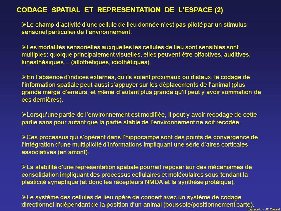 Espace L – JC Cassel CODAGE SPATIAL ET REPRESENTATION DE LESPACE (2) Le champ dactivité dune cellule de lieu donnée nest pas piloté par un stimulus se