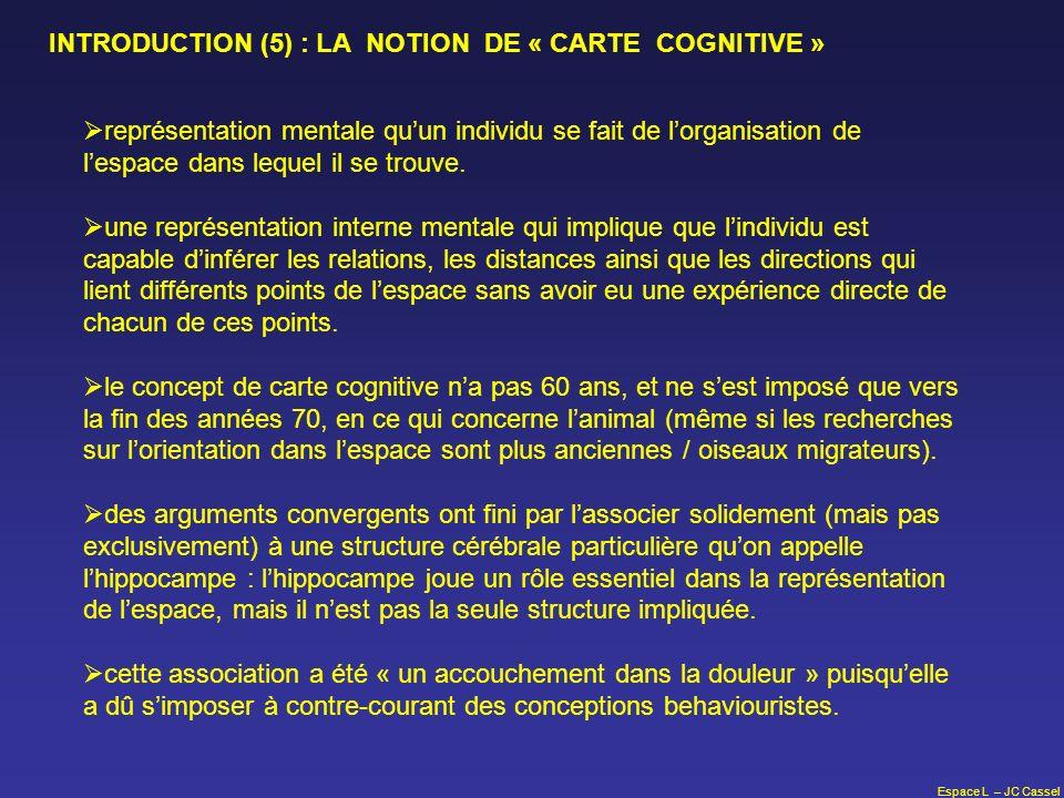 Espace L – JC Cassel représentation mentale quun individu se fait de lorganisation de lespace dans lequel il se trouve. une représentation interne men