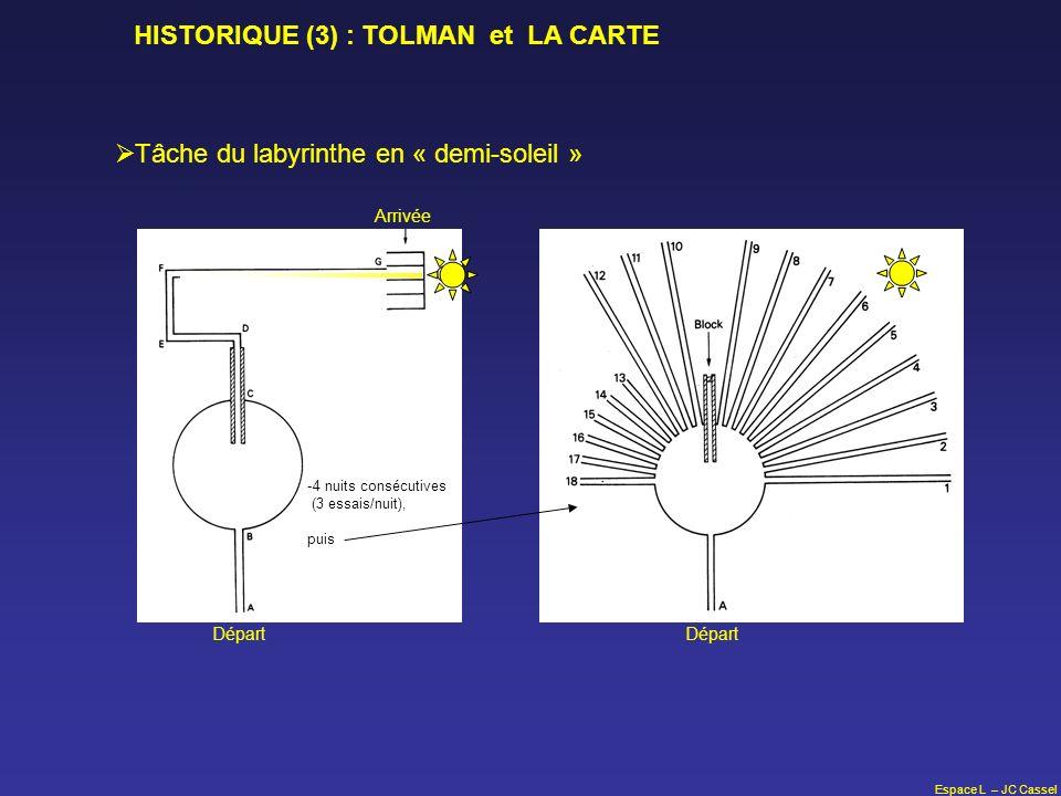 Espace L – JC Cassel HISTORIQUE (3) : TOLMAN et LA CARTE Tâche du labyrinthe en « demi-soleil » Départ Arrivée -4 nuits consécutives (3 essais/nuit),