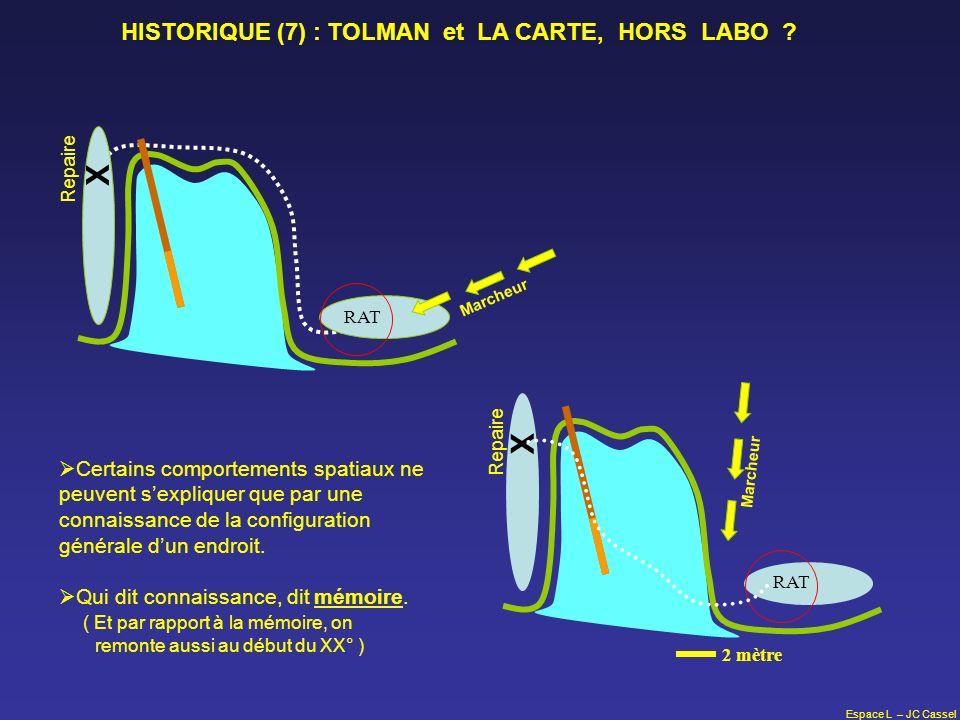 Espace L – JC Cassel Repaire X RAT Marcheur Repaire X RAT 2 mètre Marcheur HISTORIQUE (7) : TOLMAN et LA CARTE, HORS LABO ? Certains comportements spa