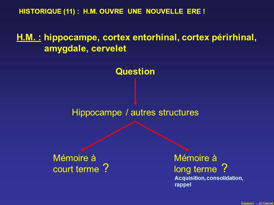 Espace L – JC Cassel H.M. : hippocampe, cortex entorhinal, cortex périrhinal, amygdale, cervelet Question Hippocampe / autres structures Mémoire à cou