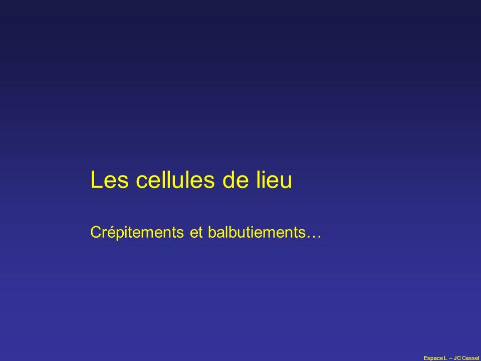 Espace L – JC Cassel Les cellules de lieu Crépitements et balbutiements…