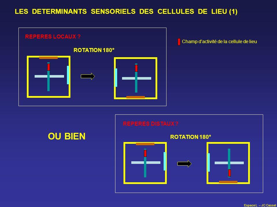 Espace L – JC Cassel LES DETERMINANTS SENSORIELS DES CELLULES DE LIEU (1) OU BIEN ROTATION 180° REPERES DISTAUX ? ROTATION 180° REPERES LOCAUX ? Champ