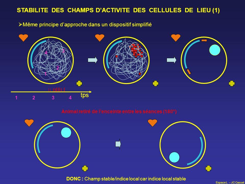 Espace L – JC Cassel STABILITE DES CHAMPS DACTIVITE DES CELLULES DE LIEU (1) Même principe dapproche dans un dispositif simplifié tps 1 2 3 4 12 3 4 A