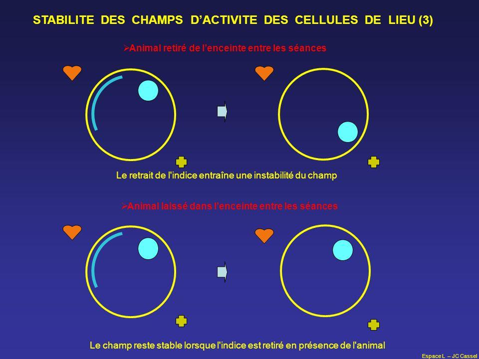 Espace L – JC Cassel STABILITE DES CHAMPS DACTIVITE DES CELLULES DE LIEU (3) Animal retiré de lenceinte entre les séances Animal laissé dans lenceinte