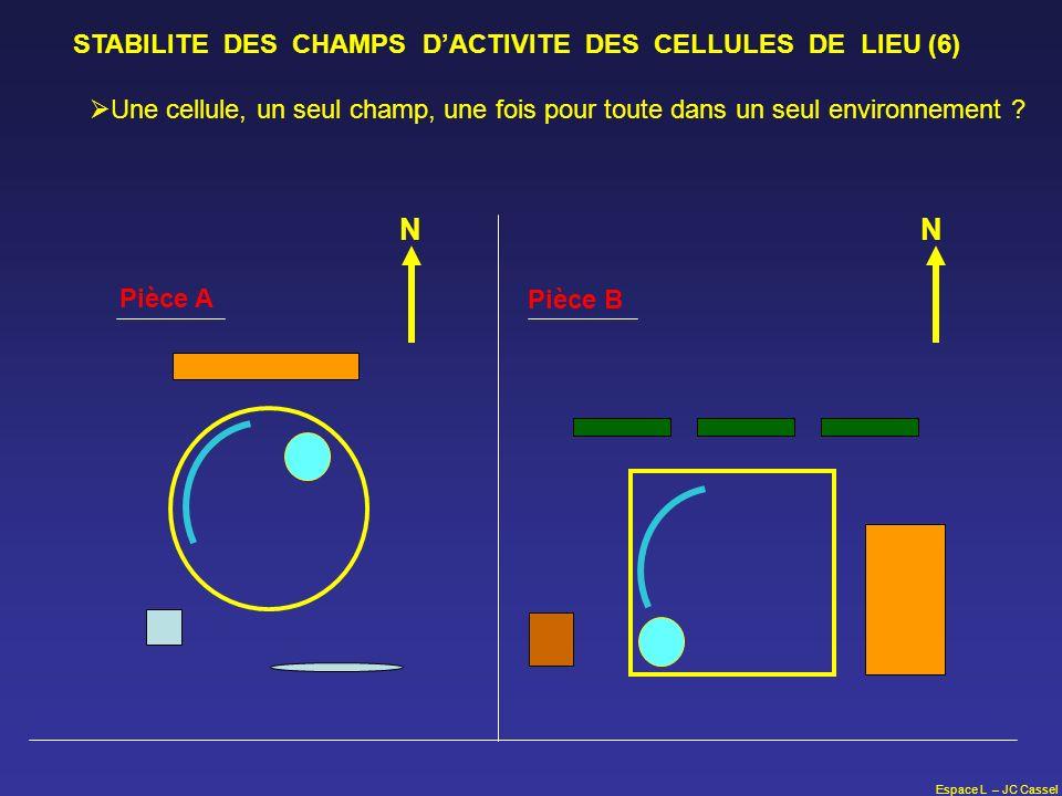 Espace L – JC Cassel STABILITE DES CHAMPS DACTIVITE DES CELLULES DE LIEU (6) N Pièce A Pièce B N Une cellule, un seul champ, une fois pour toute dans