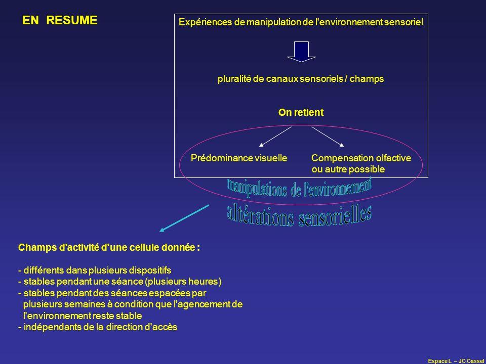 Espace L – JC Cassel Expériences de manipulation de l'environnement sensoriel pluralité de canaux sensoriels / champs On retient Prédominance visuelle