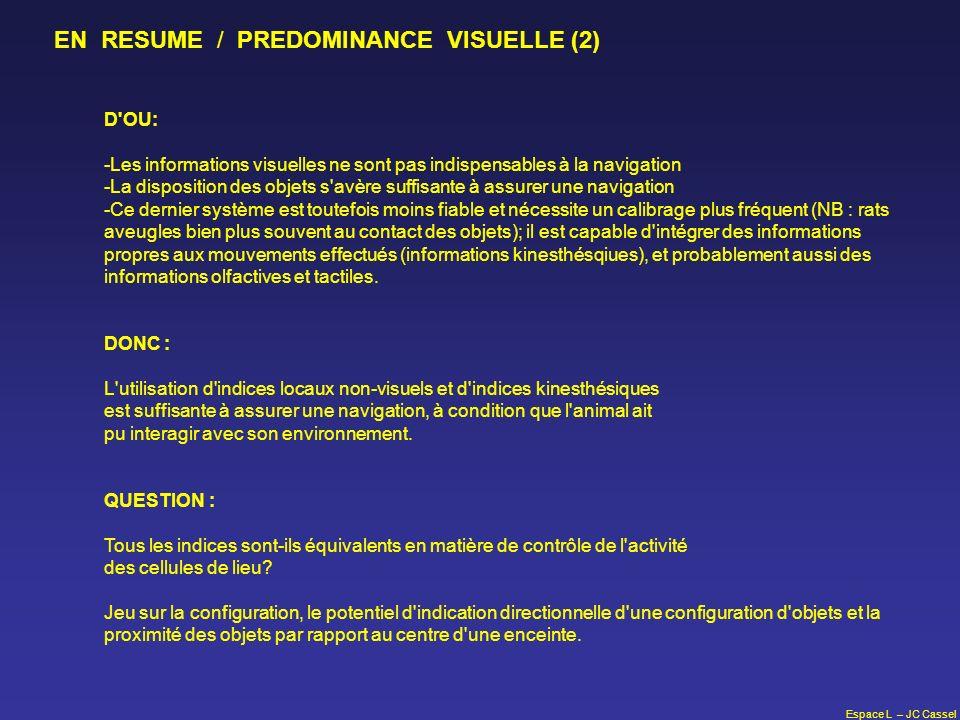 Espace L – JC Cassel D'OU: -Les informations visuelles ne sont pas indispensables à la navigation -La disposition des objets s'avère suffisante à assu