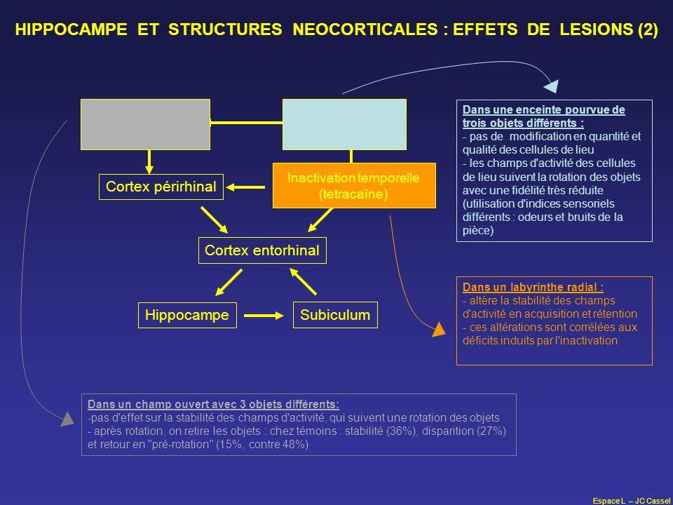 Espace L – JC Cassel HIPPOCAMPE ET STRUCTURES NEOCORTICALES : EFFETS DE LESIONS (2) Hippocampe Subiculum Cortex entorhinal Cortex périrhinalCortex rét