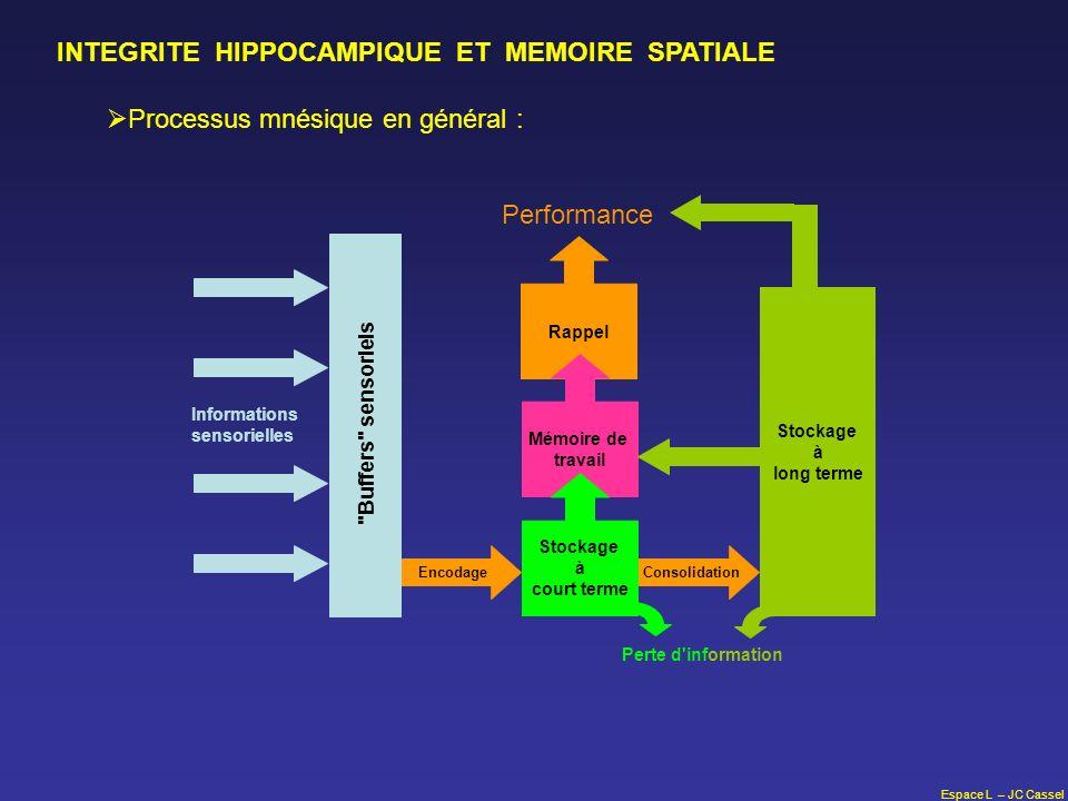 Espace L – JC Cassel INTEGRITE HIPPOCAMPIQUE ET MEMOIRE SPATIALE Processus mnésique en général : Rappel Stockage à long terme EncodageConsolidation Mé