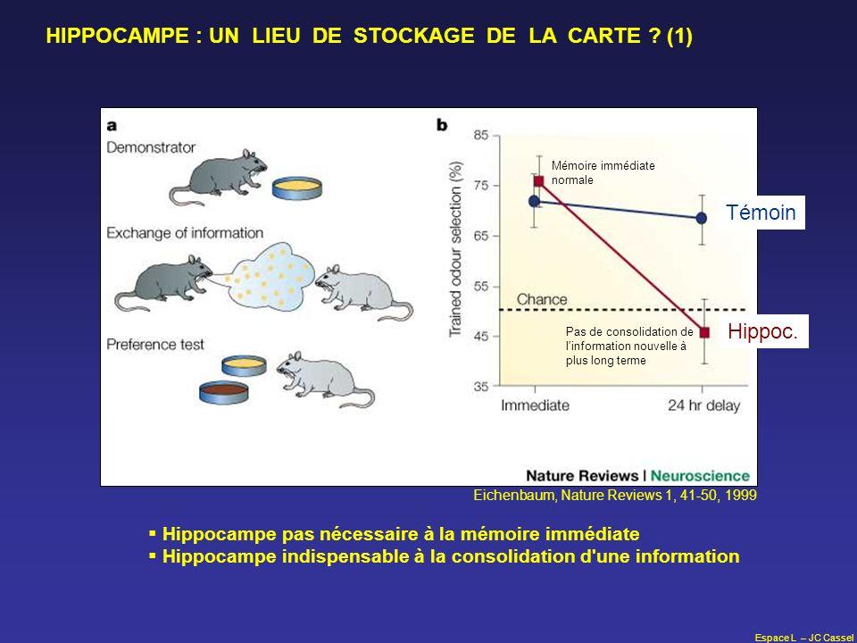 Espace L – JC Cassel Hippocampe pas nécessaire à la mémoire immédiate Hippocampe indispensable à la consolidation d'une information Mémoire immédiate