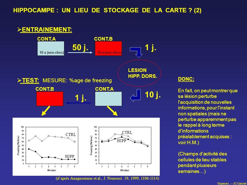 Espace L – JC Cassel CONT.ACONT.B LESION HIPP. DORS. 50 j.1 j. ENTRAINEMENT: 10 x (son-choc) CONT.ACONT.B 10 j. 1 j. TEST: MESURE: %age de freezing HI