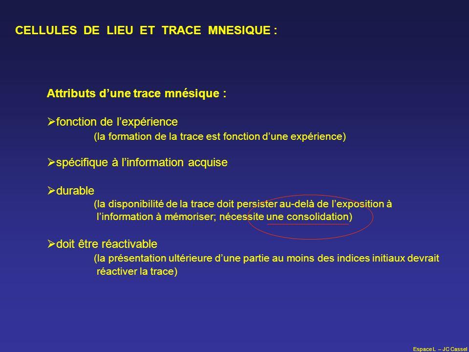 Espace L – JC Cassel CELLULES DE LIEU ET TRACE MNESIQUE : Attributs dune trace mnésique : fonction de lexpérience (la formation de la trace est foncti