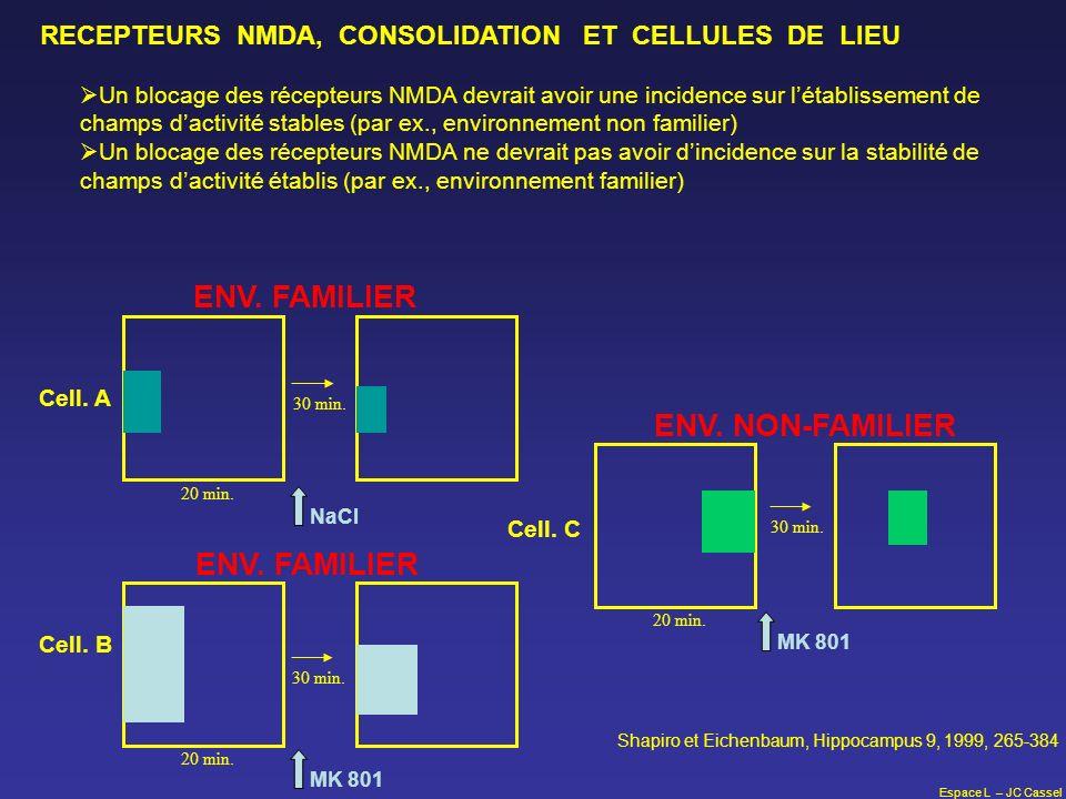 Espace L – JC Cassel RECEPTEURS NMDA, CONSOLIDATION ET CELLULES DE LIEU Un blocage des récepteurs NMDA devrait avoir une incidence sur létablissement