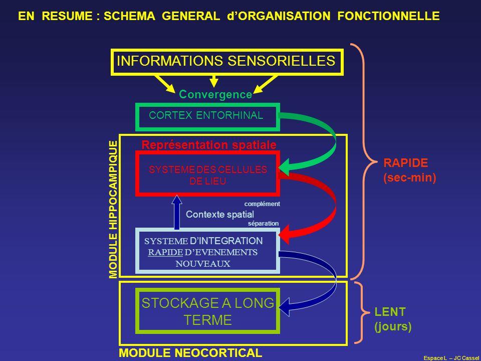 Espace L – JC Cassel SYSTEME DES CELLULES DE LIEU SYSTEME DINTEGRATION RAPIDE DEVENEMENTS NOUVEAUX STOCKAGE A LONG TERME CORTEX ENTORHINAL INFORMATION