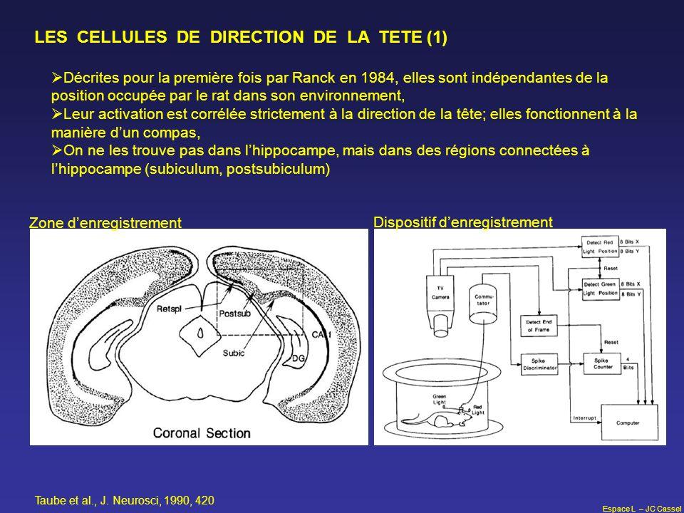 Espace L – JC Cassel LES CELLULES DE DIRECTION DE LA TETE (1) Décrites pour la première fois par Ranck en 1984, elles sont indépendantes de la positio