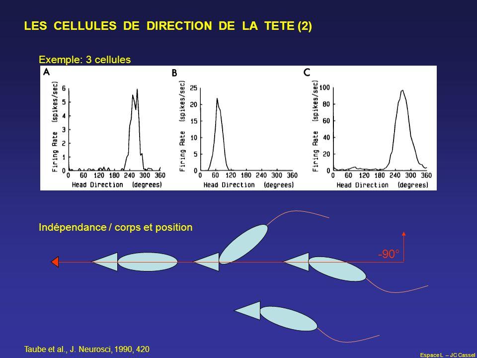 Espace L – JC Cassel LES CELLULES DE DIRECTION DE LA TETE (2) -90° Taube et al., J. Neurosci, 1990, 420 Exemple: 3 cellules Indépendance / corps et po