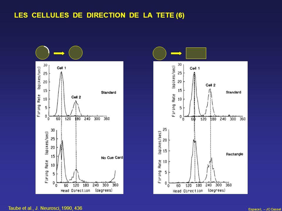 Espace L – JC Cassel LES CELLULES DE DIRECTION DE LA TETE (6) Taube et al., J. Neurosci, 1990, 436
