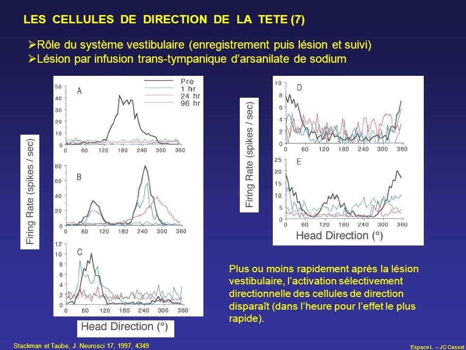 Espace L – JC Cassel LES CELLULES DE DIRECTION DE LA TETE (7) Rôle du système vestibulaire (enregistrement puis lésion et suivi) Lésion par infusion t