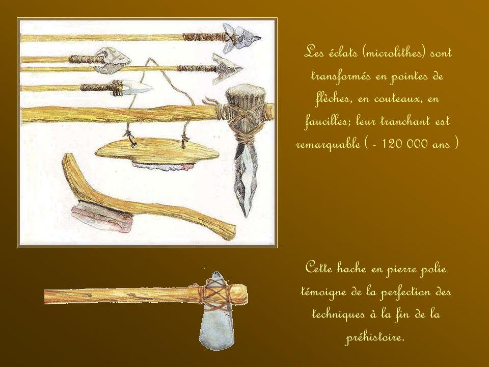 Les hommes de la préhistoire en entrechoquant des nodules de pyrite et du silex pouvaient obtenir des étincelles et enflammer des herbes sèches. Ils a