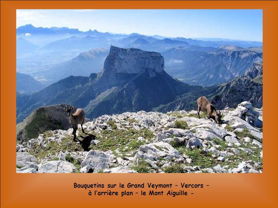 La Pointe de lEchelle – Vanoise -