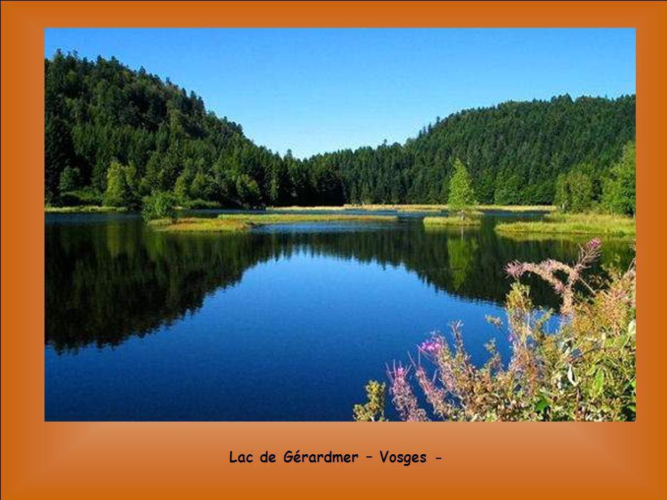La vallée de lAsco – Corse -
