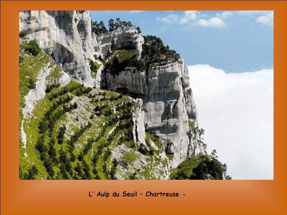 L Aulp du Seuil – Chartreuse -