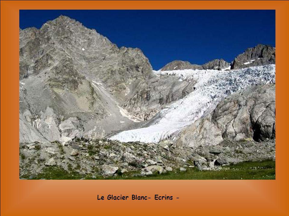 Le Glacier Blanc- Ecrins -