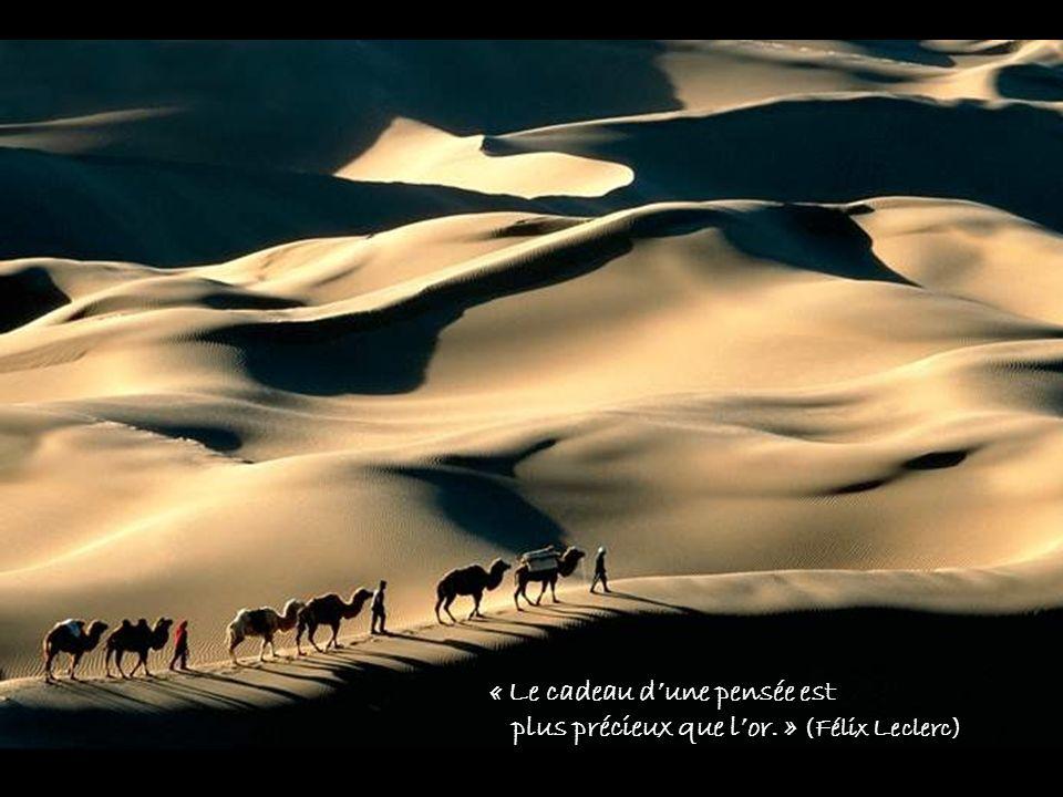 « Le cadeau dune pensée est plus précieux que lor. » (Félix Leclerc)