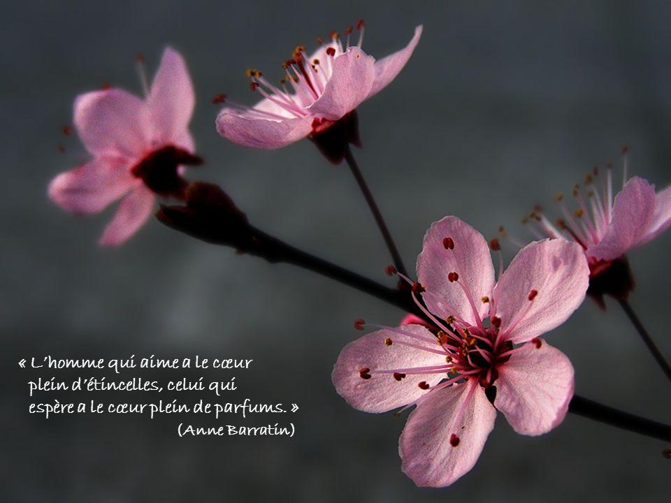 « Lhomme qui aime a le cœur plein détincelles, celui qui espère a le cœur plein de parfums.
