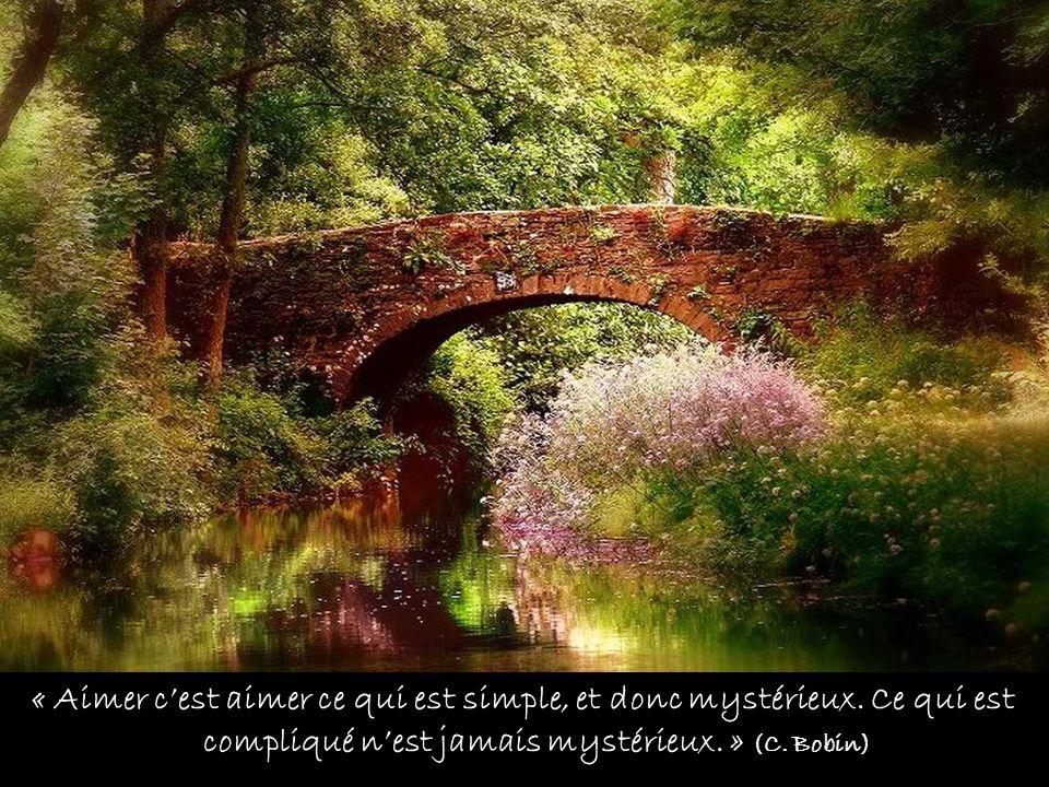 « Aimer cest aimer ce qui est simple, et donc mystérieux.