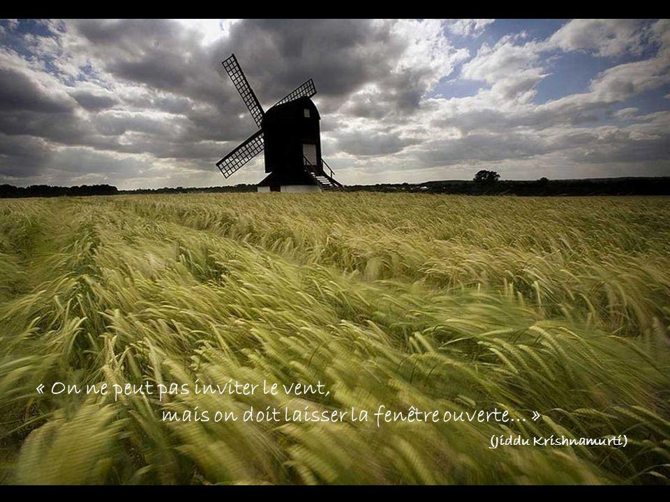 « On ne peut pas inviter le vent, mais on doit laisser la fenêtre ouverte… » (Jiddu Krishnamurti)