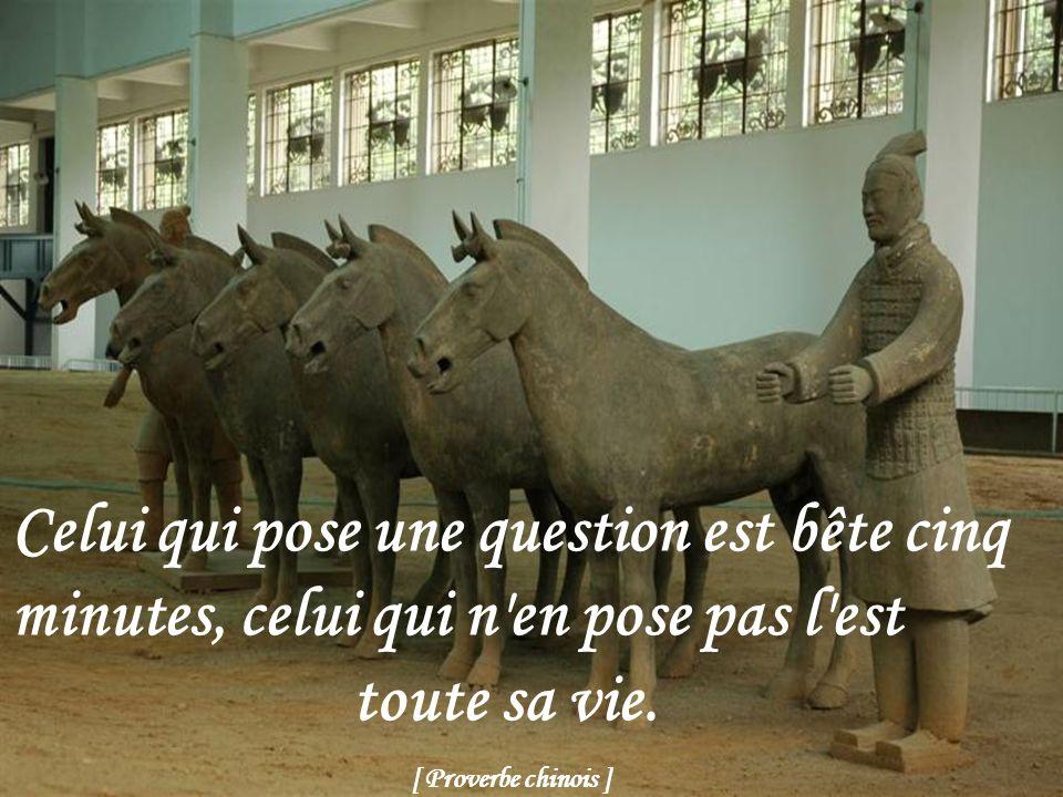 Celui qui pose une question est bête cinq minutes, celui qui n en pose pas l est toute sa vie.
