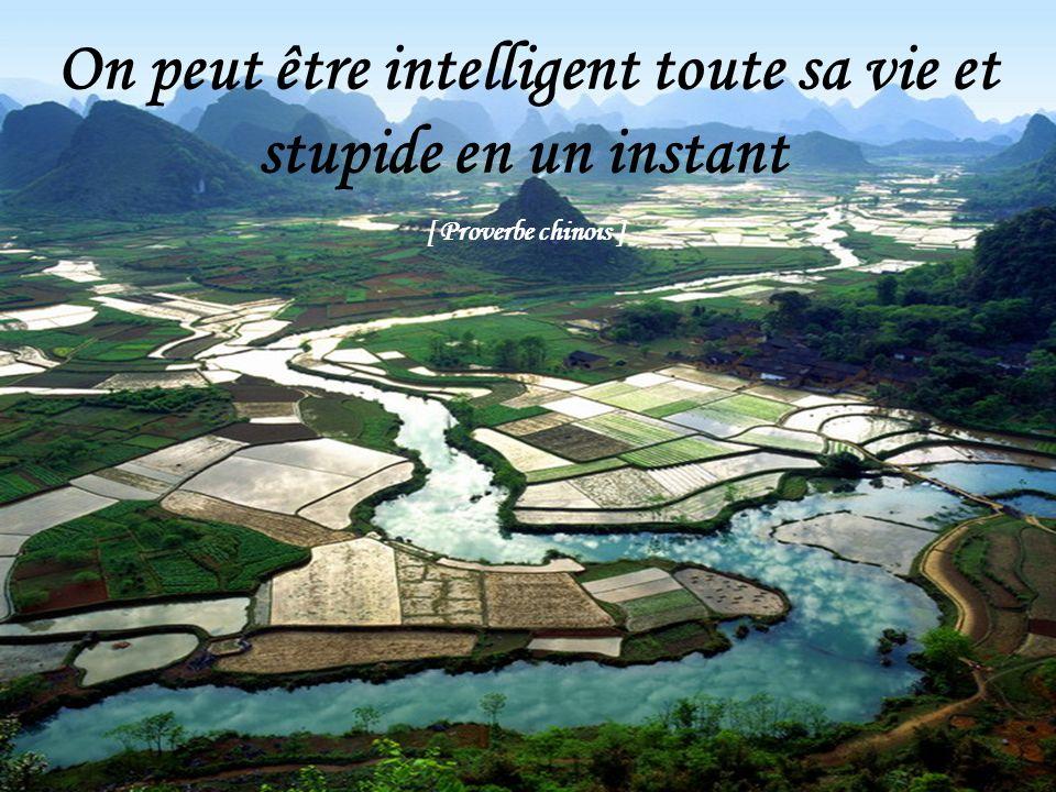On peut être intelligent toute sa vie et stupide en un instant [ Proverbe chinois ]