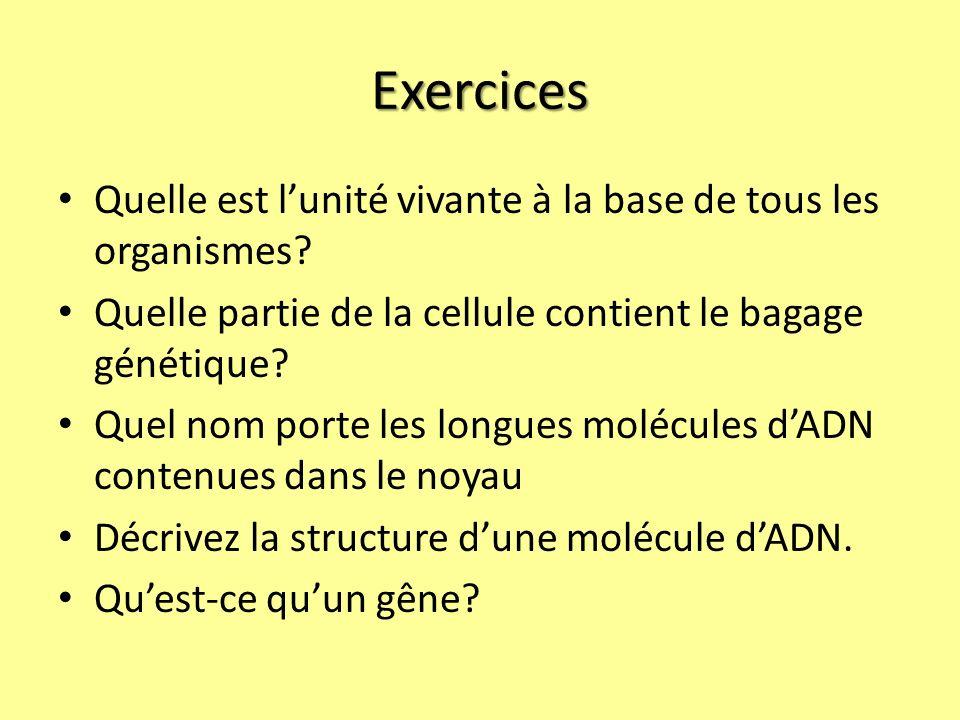 Exercices Quelle est lunité vivante à la base de tous les organismes.