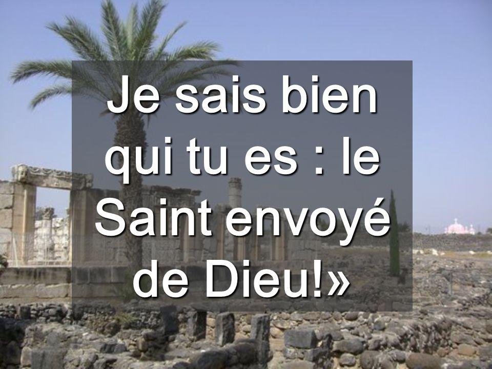Je sais bien qui tu es : le Saint envoyé de Dieu!»